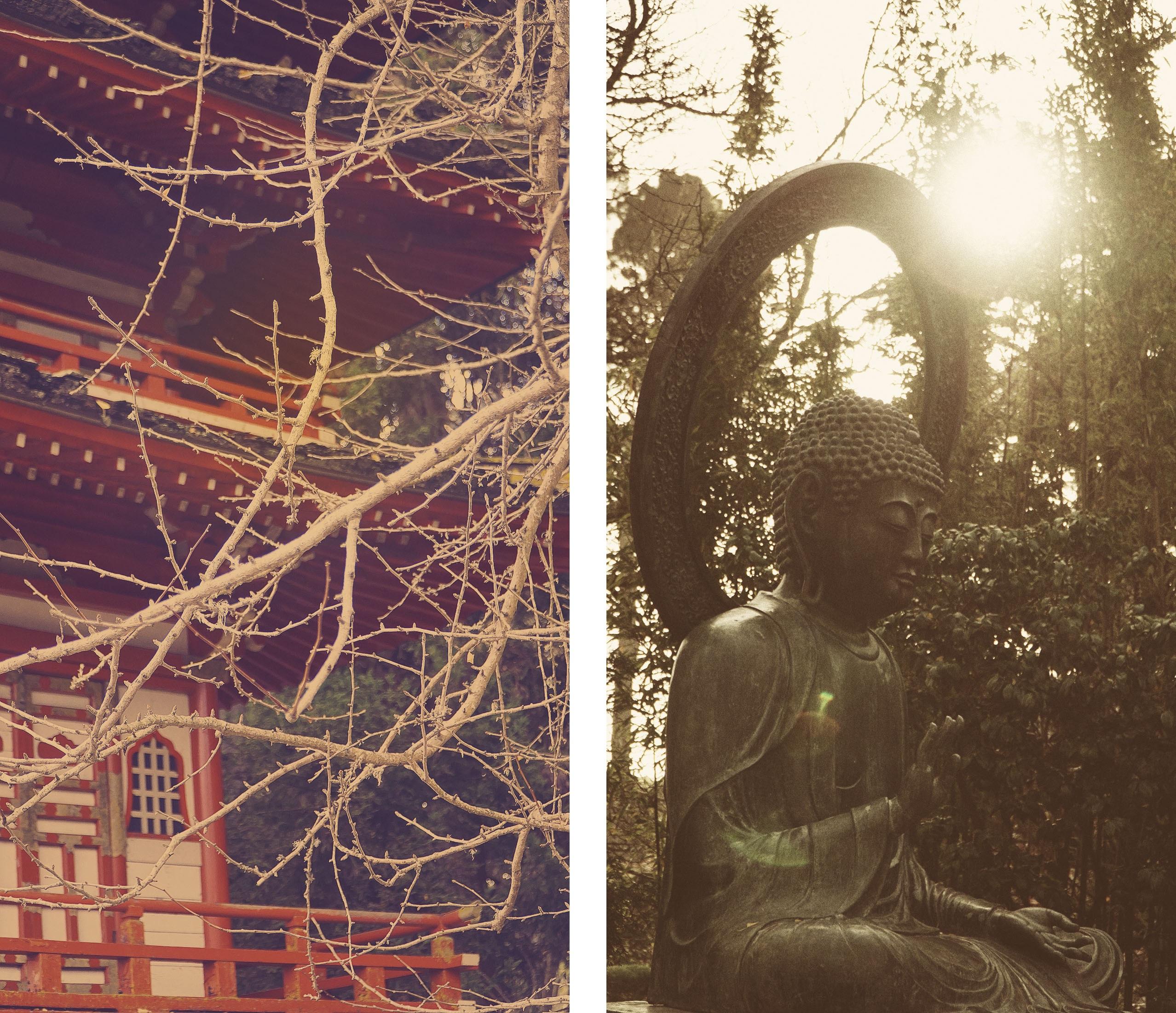 japanese-garden-composition
